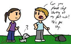Pet Rock Cartoon